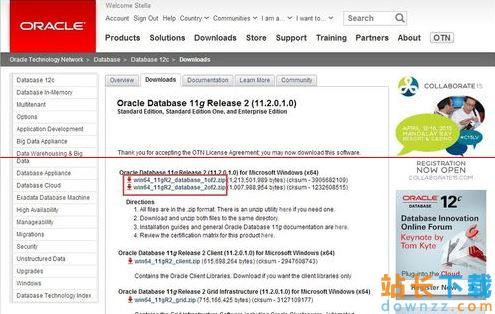 Oracle11g服务器安装详细步骤图文<em style='color:red;'>详解</em>