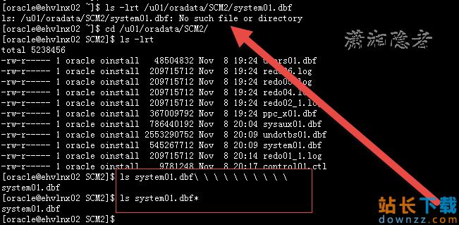 OracleRMAN还原时setnewname文件名有空格报错的解决办法