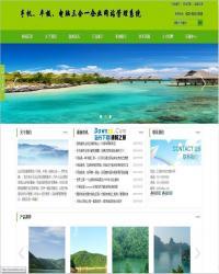 网新企业智能化网站管理系统 v6.7(绿色带手机版)