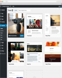 WordPress个人信息发布平台v5.0 beta1