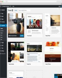WordPress信息发布平台 v5.0 beta3